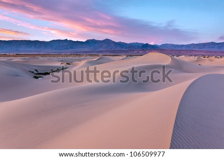Mesquite Dunes in Death Valley National Park, California is a constantly changing phenomenon and picks up the color of a sunset beautifully - stock photo