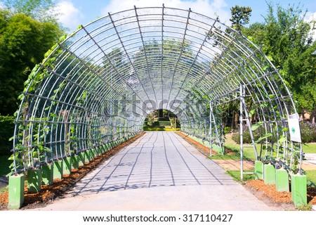 Metal pergola in park ( Metal arbor ) - stock photo