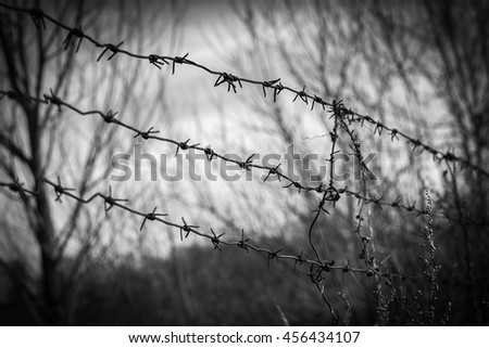 Metal rusty barbed wire border with thorns. Vintage black and white. Freedom concept - stock photo