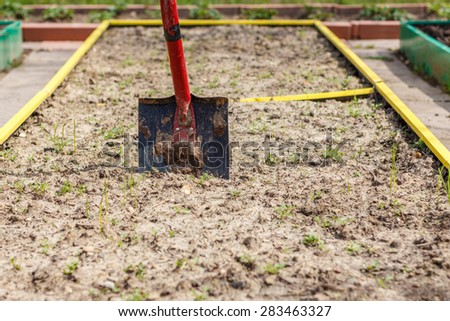 Metal shovel in the ground in the  seedbed. Vegetable garden. Household plot. Dacha. - stock photo