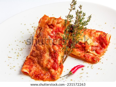 Mexican chicken enchiladas with spicy tomato sauce and cheese on white plate - stock photo