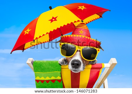 mexican dog on vacation relaxing on a deck chair under an umbrella - stock photo