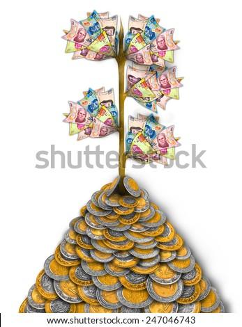 Mexican Peso Money Growth Tree - stock photo