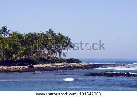 mexico/palm coast/ - stock photo