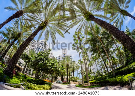 Miami Beach, Florida USA - July 31, 2014: Beautiful Miami Beach, a popular international travel destination, fish eye view cityscape with palm trees and art deco architecture. - stock photo
