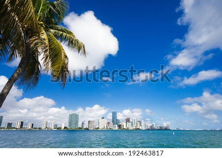 MIami Downtown Business Area,with palm tree on the side - Florida ,United States - stock photo