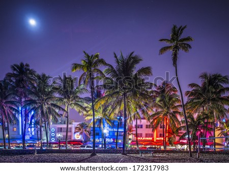 MIAMI, FLORIDA - JANUARY 6, 2014: Palm trees line Ocean Drive. The road is the main thoroughfare through South Beach. - stock photo