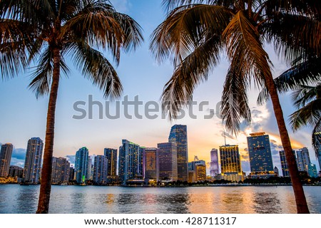 Miami, Florida skyline and bay at sunset seen through palm trees  - stock photo