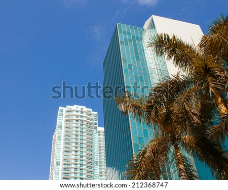 Miami, USA. Tropical landscape with palms and skyscrapers. - stock photo