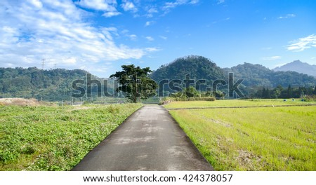 Miaoli, Taiwan - Green summer meadow with flowers and herbs and big oak tree at hakka place - stock photo