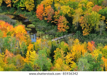 Michigan's Porcupine Mountains Wilderness State park  Footbridge crossing carp river - stock photo