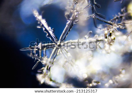 Micro Photo of Snow Crystals - stock photo