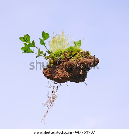 Microcosm. The lump of land sticking small green plants, moss and roots on the background of blue sky - stock photo