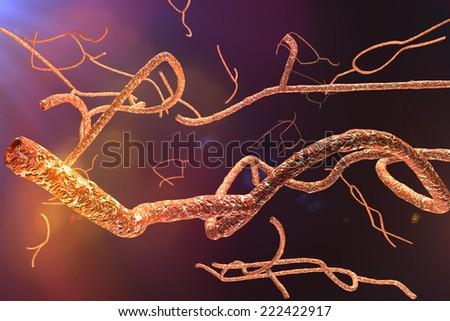 Microscopic Ebola Virus 3D render - stock photo