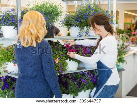 Mid adult florist assisting female customer in buying flower plants at store - stock photo