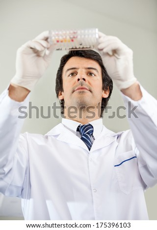 Mid adult male scientist analyzing microplate in laboratory - stock photo
