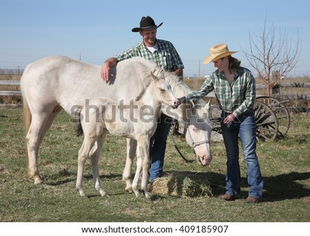 mid-adult woman with white horse and foal grazing on hay - stock photo