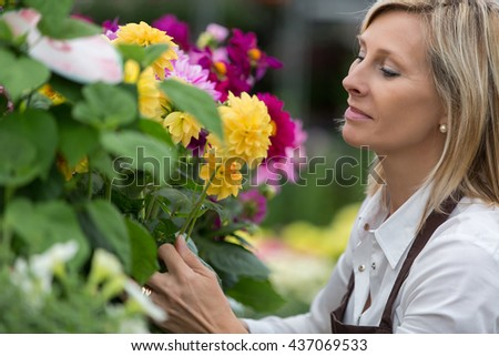 middle aged woman gardening in greenhouse - stock photo