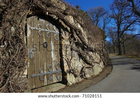 Middle ages door - stock photo