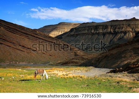 Middle Atlas Mountains, Morocco, Africa - stock photo