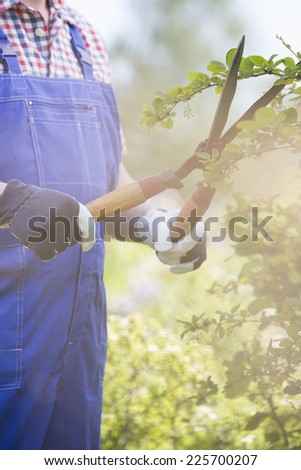 Midsection of gardener trimming branches at plant nursery - stock photo