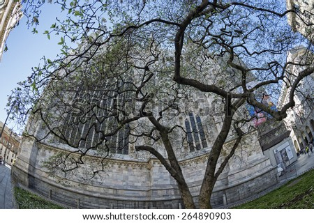 Milan Dome gothic Cathedral blossom tree detail - stock photo