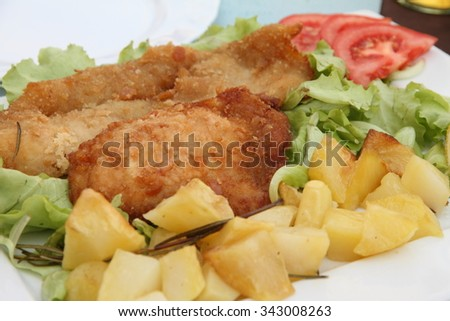Milanese frites and tomato salad - stock photo
