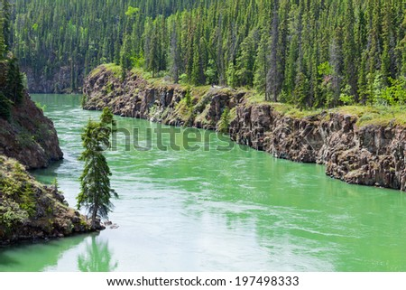 Miles Canyon Yukon River rock cliffs in dense boreal forest taiga just South of the city of Whitehorse, Yukon Territory, Canada - stock photo