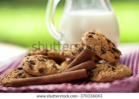 milk and cookies with cinnamon for breakfast - stock photo