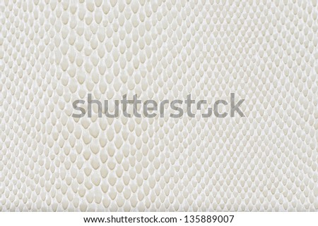 Milk artificial leather snake texture background(Cobra) - stock photo