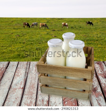 milk in a box on wooden table overlooking a meadow with grazing cows. - stock photo