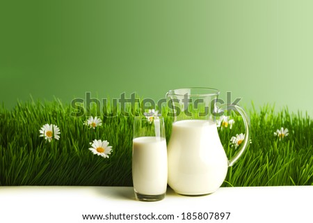 Milk jug and glass on the grass with chamomiles background - stock photo