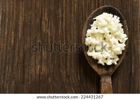 Milk kefir grains on a wooden spoon overhead shot - stock photo