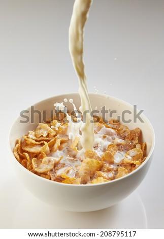 milk pouring into bowl with corn flakes on white background - stock photo
