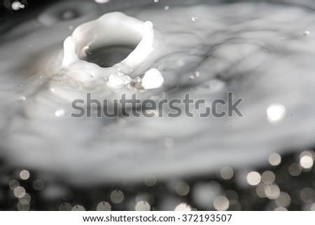 Milk splash macro on black - stock photo