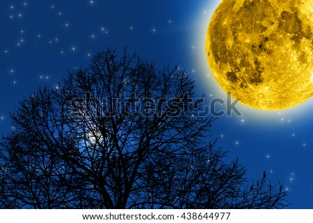 Milky way stars with forest silhouettes. No elements of NASA or other third party. - stock photo