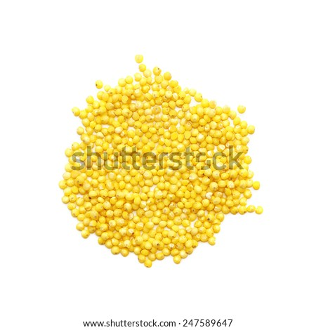 Millet cereal isolated on white background. - stock photo