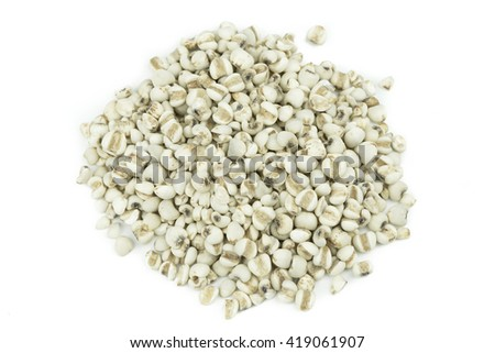 Millet grains on white background. - stock photo