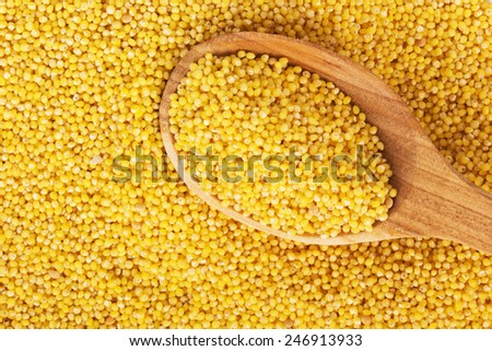 millet on a wooden spoon - stock photo
