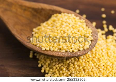 Millet on wooden spoon - stock photo