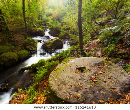 Millstone and waterfalls in the woods at Kennal Vale nature reserve Cornwall England UK - stock photo