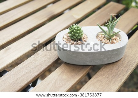 Mini cactus in stone pot, lath table in the garden, wood table, home garden, cactus, stone, pot, wooden furniture, wood, garden, green, outdoor, concrete, tree, nature, rustic, close up - stock photo