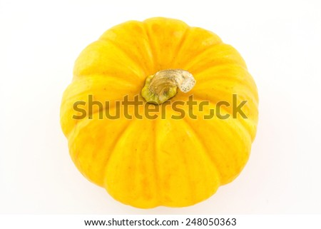 mini pumpkin isolated on white background - stock photo