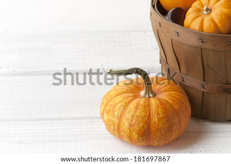 Mini Pumpkins and a Basket on White Painted Rough Boards as Background with room or space for copy, text, words.  Horizontal - stock photo