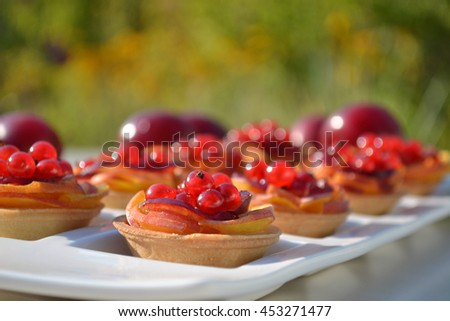 Mini tarts with slices of peach and plums, red currant in porcelain plate. Summer fresh fruit pastry. Red tasty dessert on outdoor background. Close up of cake. Selective focus. - stock photo