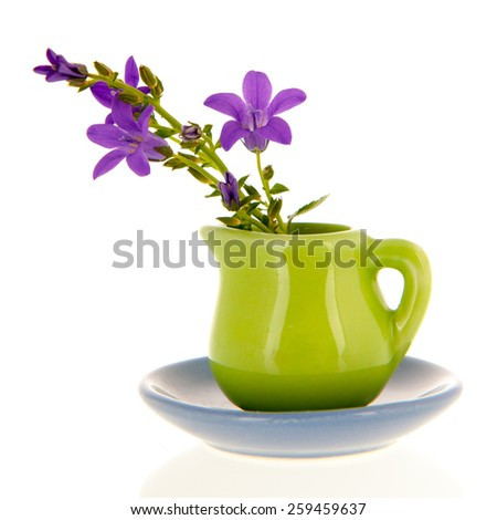 Miniature vase and flowers isolated over white background - stock photo