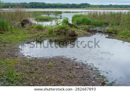 minnesota valley wildlife refuge along waters and forest of gun club lake and minnesota river bottoms of mendota heights and bloomington minnesota - stock photo