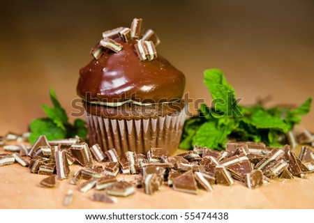 Mint Chocolate Cupcake - stock photo