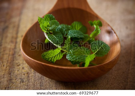 mint green stalks in a wooden spoon - stock photo