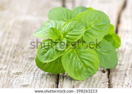 mint leaves - stock photo